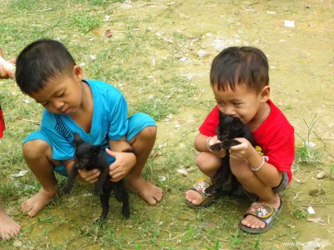 Niños con sus gatitos. Vang Vieng