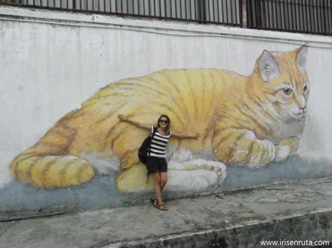 Este gato es como Frusi, el gatito que tuve durante 9 años